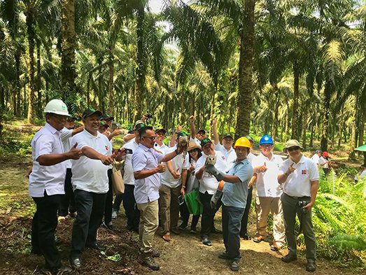 Indonesian Diplomats Receive Brief on Oil Palm
