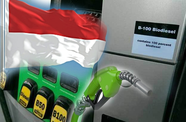 Indonesia into the Era of Green Fuels Industry