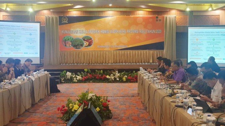 Komisi XI DPR Kunjungi Riau, Dalami Persoalan Sawit