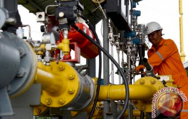 Lower Gas Price Improves Competitiveness in Oleochemical Industry