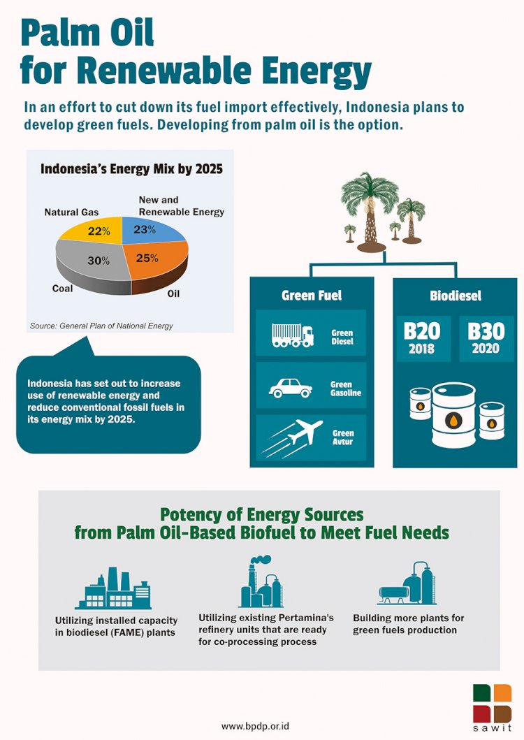 Palm Oil for Renewable Energy