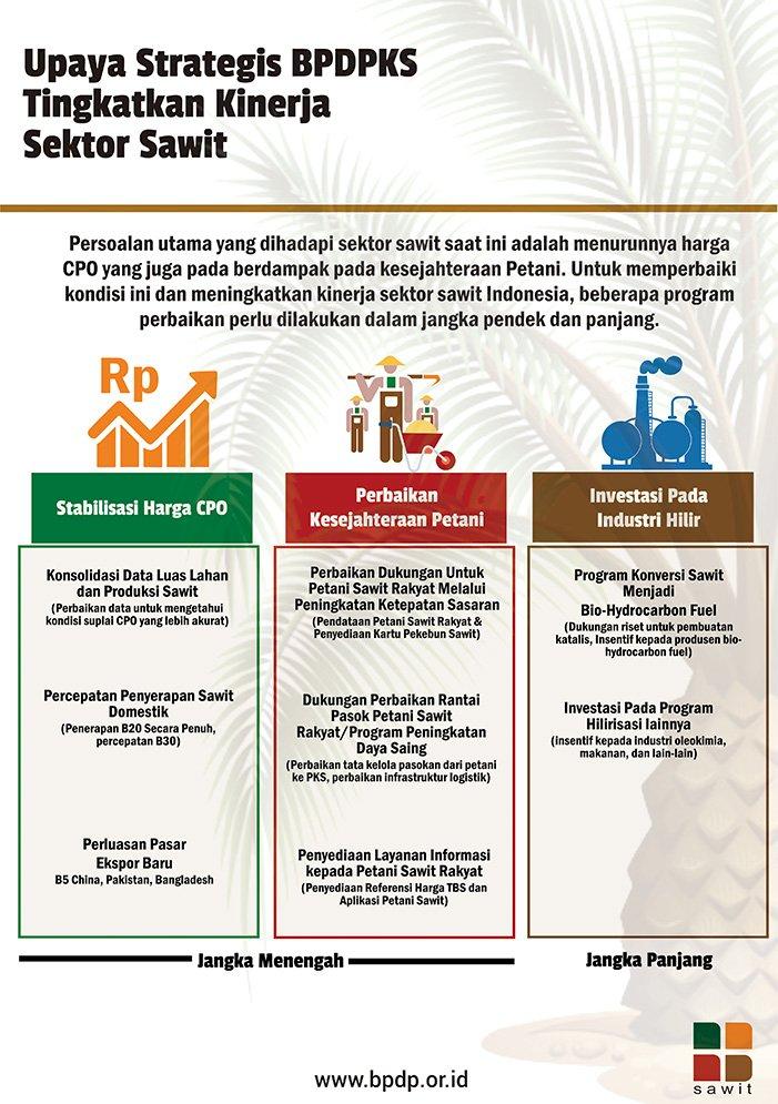 Upaya Strategis BPDPKS Tingkatkan Kinerja Sektor Sawit