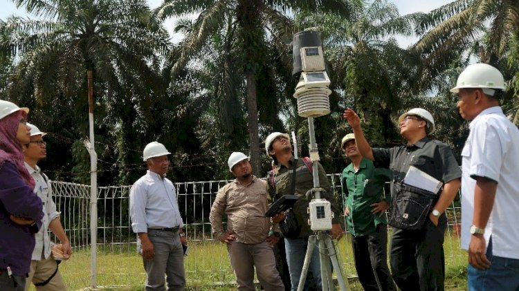 Study on Water Footprint Shows Oil Palm Plantations Not A Threat to Water Sources