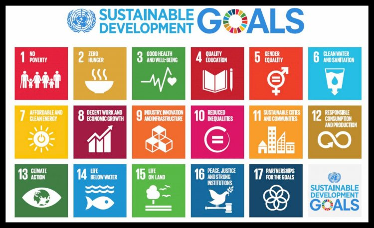 Studies on the Role of Vegetable Oil in Achieving SDGs Deemed Necessary