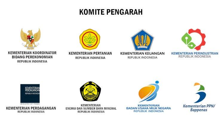 Komite Pengarah