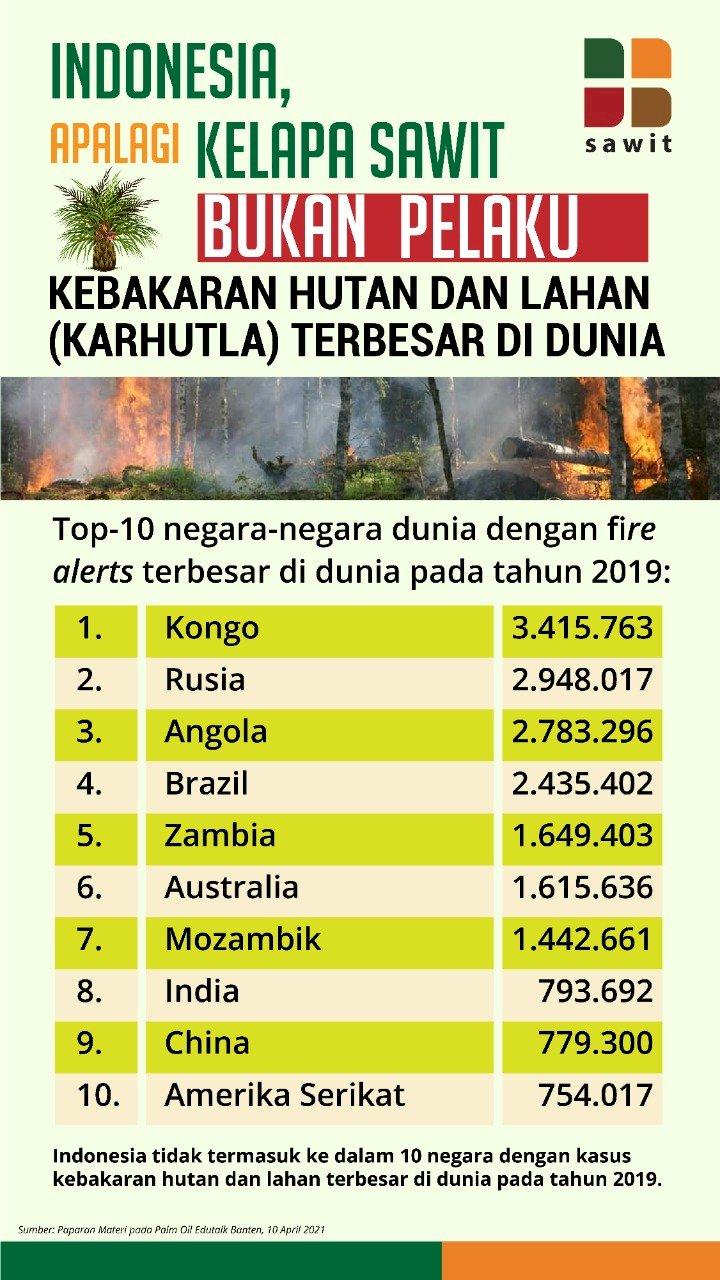 Top 10 Negara dengan Kebakaran Hutan dan Lahan (Karhutla) di Dunia: Indonesia Tidak Termasuk