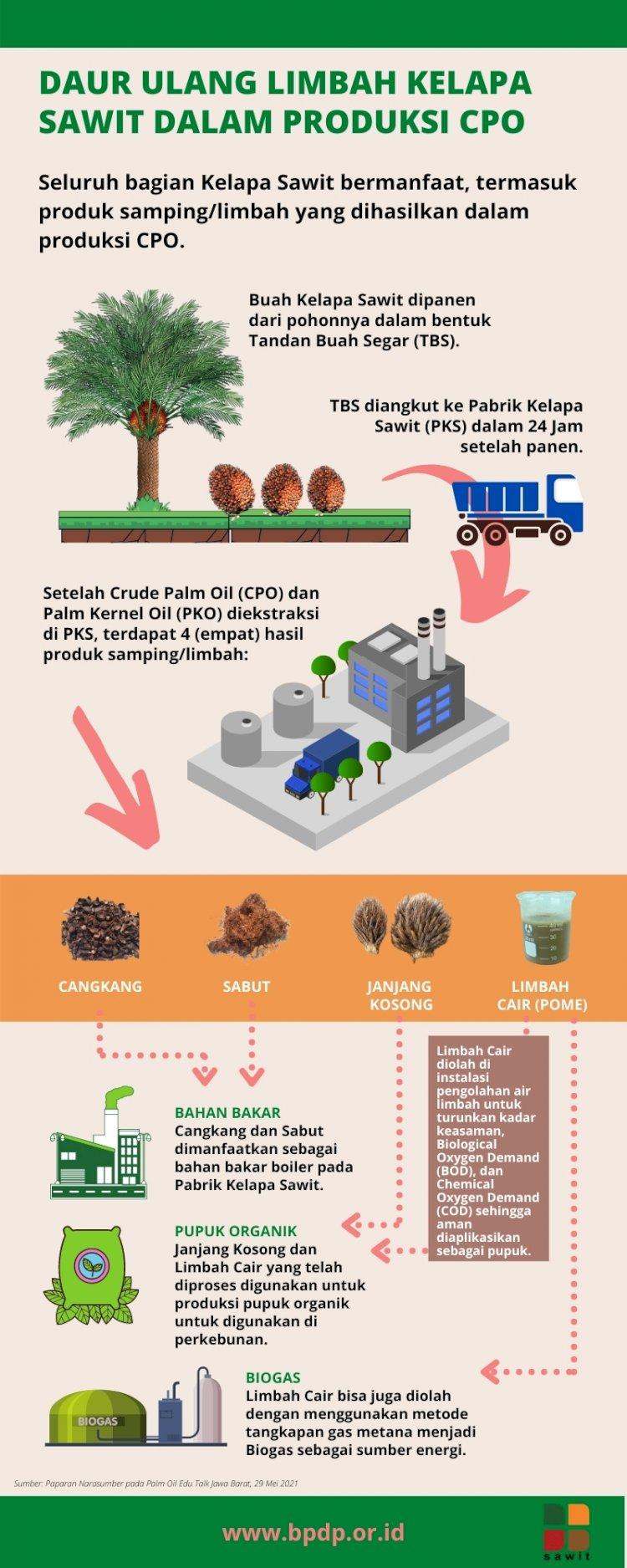Daur Ulang Limbah Kelapa Sawit dalam Produksi CPO