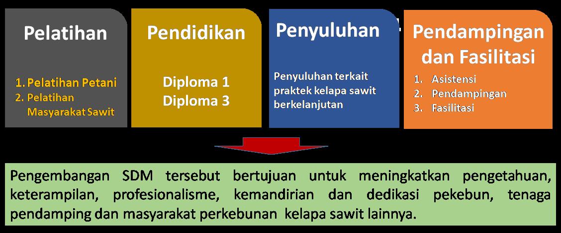 contoh program pengembangan sdm sekolah
