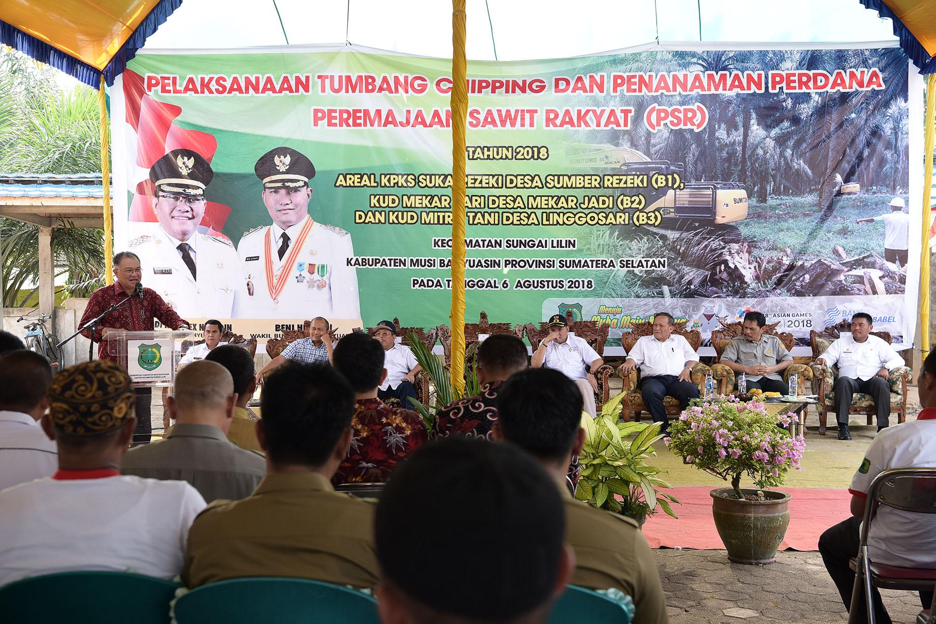 Tumbang Chipping Tandai Replanting Sawit Tahap II di Musi Banyuasin