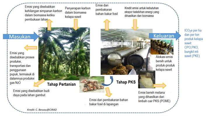 Palm Oil GHG dan Arah Penelitian Kelapa Sawit Bidang Lingkungan