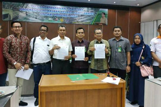 Petani Kelapa Sawit di Aceh Tuntaskan Proses Pendanaan Replanting