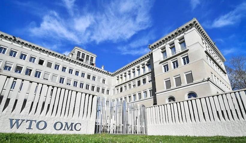 Persiapan Litigasi ke WTO terkait Diskriminasi Sawit Perlu Segera Dilakukan