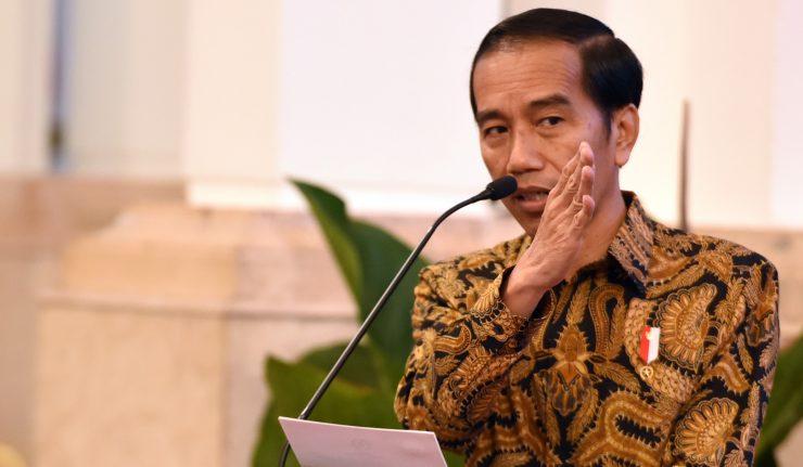 Presiden Terbitkan Inpres Rencana Aksi Nasional Sawit Berkelanjutan 2019-2024